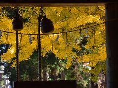 紅葉の磐越西線と喜多方長床の大イチョウを訪ねて(福島)