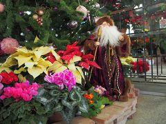 花のクリスマス