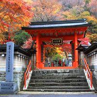 2015紅葉歩き~奈良県 みたらい渓谷~洞川温泉・龍泉寺 後半