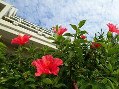 ☆今年最後の旅も沖縄へgo~♪のんびり女子2人旅☆後半