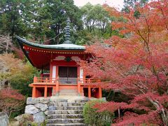 秋の京都への出張2-紅葉の醍醐寺を訪れる