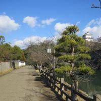 初詣の後は姫路城へ、混雑を予想していましたが・・・・・・・・・