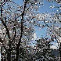 北関東と鎌倉の年末紀行 - 今年初の雪景色 -