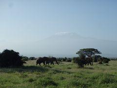 2015年末年始は東アフリカ4ヶ国の旅(6)アンボセリ国立公園で寝年越し(^^ゞでもキリマンジャロ山を堪能&サファリツアー後半