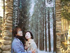 3年ぶり復活 ソウルでクリスマス3 12月22日