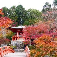 【国内204】秋の京都への出張  ホテルグランヴィア京都 高騰にびっくり 紅葉の醍醐寺を訪れる