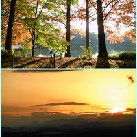 県立中央公園と県庁展望室ロビー