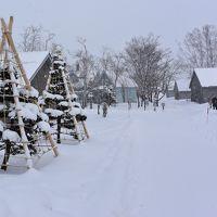 冬の余市から函館を巡る雪道ドライブ(1)