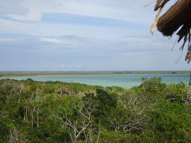 キューバからメキシコに戻りトゥルムに来ましたが、世界遺産「シアン・カーン自然保護区」が目的です。<br /><br />中米縦断の旅の日程(☆が本日)<br />1.3月1日 バラコア→ハバナ(キューバ)→カンクン(メキシコ)→トゥルム<br />☆2.3月2日 シアン・カーン自然保護区(メキシコ)<br /><br />参考:地球の歩き方<br />   世界遺産アカデミー