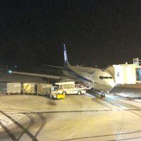 雪の山形・おいしい庄内空港に到着しました(^0^)そしてホテルへ・・・