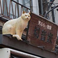 格安クラシックコンサートのあとは…根津神社~谷中銀座ぶらりお散歩  猫ちゃんには出会えなかったけどね。。。
