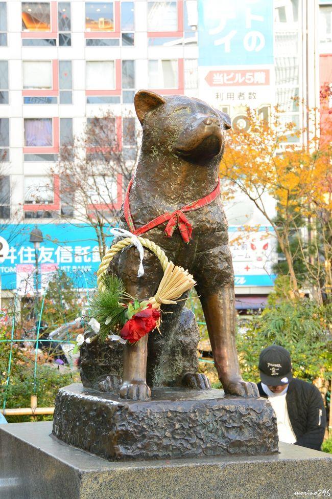 渋谷駅周辺のパブリックアートを巡りました。<br />渋谷といえば「忠犬ハチ公」ですが、それ以外にもいろいろなアート作品が楽しめます。