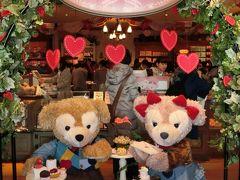 東京1泊2日、2日目のフリーは、もちろんディズニーシー