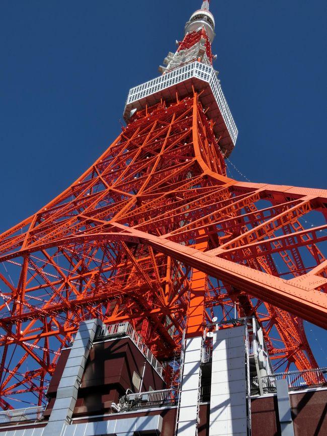 JR東海のツアーで東京に向かいました。<br />岐阜羽島駅を朝一番の新幹線で名古屋に向かい、名古屋発のツアーに参加です。<br /><br />ところが、友達は雨女。今回は、雪女になりました。明け方から降り出した雪は、出掛ける時には少し積もっていました。名古屋駅での待ち時間は15分の予定。<br />米原や関ヶ原の雪で遅れたみたいで岐阜羽島に到着したのは10分遅れ。それが、すぐに発車しないでのぞみを1本通過待ち。そののぞみが、乗る予定のだったら、どうしようと名古屋に着くまでドキドキでした。添乗員さんに連絡も取ったりして。<br />結局、名古屋でも、30分程度遅れが出ていて無事に予定の新幹線に乗れてホッとしました。浜松まで徐行運転で品川には1時間程度の遅れでした。<br />のぞみも浜松で臨時停車して雪下ろしをしていました。多分、正面の雪を落とすのでしょうね。<br />その辺りからは、雪もなくなってきて途中、富士山がドーンと大きく見れました。あんなに凄い富士山はあまり見た事がないんじゃないかな?<br />東京に着くと快晴で暖かく感じましたよ。<br /><br />まずは、東京タワー。子供の頃に行ったきりです。やっぱり低く感じますね。スカイツリーも全体が見えなくて。<br />それから隅田川クルーズです。初めてで楽しめました。眺めも良かったです。<br />そして谷中銀座と巣鴨散策。時間が、30分程度ずつだったので大して回れませんでした。<br /><br />都庁の展望台に向かい、綺麗な夕日の富士山も見れました。もちろんスカイツリーもバッチリ。<br />その後、皇居周辺ドライブして丸の内のイルミネーションに行きました。とっても綺麗でした。<br /><br />ホテルには予定通りの時間に到着してビックリでした。ほとんどの人が、集合時間前に集まるので少しずつ早まったのかな?道路も空いていたしね。とても充実した1日になりました。<br /><br />そして翌日のディズニーシーに続きます。