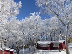 冬の軽井沢スキーバカンス♪ Vol3 ☆美しい樹氷の軽井沢プリンススキー場 優雅に滑る♪