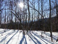 冬の軽井沢スキーバカンス♪ Vol5 ☆軽井沢プリンススキー場 ガンガン滑る♪