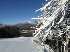 冬の軽井沢スキーバカンス♪ Vol7 ☆軽井沢プリンスホテル・ドックコテージの朝食と優雅にスキー♪