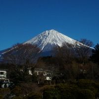 東京から日帰り・車なしで行ける世界遺産・富士山浅間大社&白糸の滝