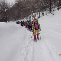 大寒波の中、最高気温-11度の上高地でスノーシューハイキングをしてきました。