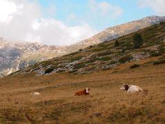 アブルッツォ州とモリーゼ州の旅 カンポ・インペラトーレ(Campo Imperatore)