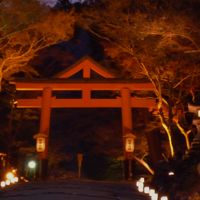 11月下旬 混雑を避けて…心静かに紅葉を愛でる京都&滋賀その1