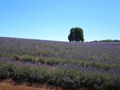 オーストラリア メルボルン・タスマニアの旅(その3)