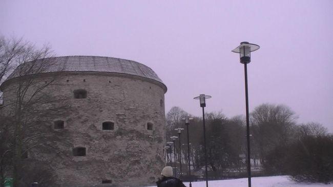 北欧とタリンの旅(9) 太っちょマルガリータを見て、フェリーでヘルシンキへ・・・