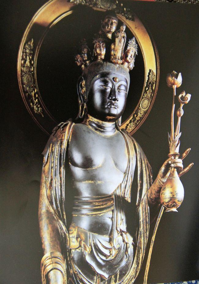 「南山城の古寺」 素晴らしき仏像を拝観してきました。<br /><br />昔、山城国と呼ばれていた京都府の南部、木津川沿いの地域が南山城。<br />この地域には奈良時代や平安時代に創建された古刹が点在しています。<br />度重なる兵火や火災で壮大な伽藍は焼失し、往時の隆盛を物語る寺はほとんどありませんが、祀られている仏像は信じられないくらい素晴らしい逸品ばかりです。<br />京田辺市の観音寺、寿宝寺、酬恩庵(一休寺)、木津川市の蟹満寺を拝観しました。<br /><br />表紙は<br />観音寺(大御堂)の十一面観世音菩薩立像(国宝)です。<br />冊子「南山城の古寺」よりコピーさせてもらいました。