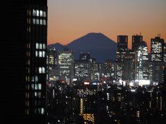 湯島天神梅まつり~夜景スポットの文京シビックセンター展望ラウンジを訪れて