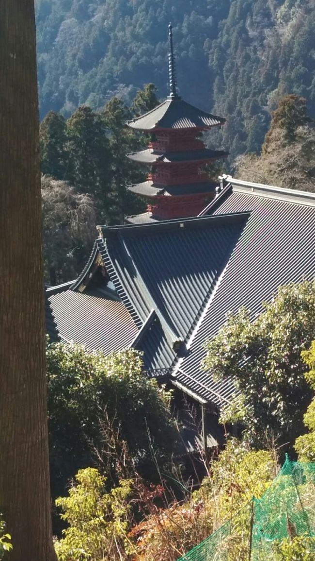 日蓮宗の総本山「身延山・久遠寺」へ行ってきました。<br />といっても山歩きがメインです。<br />大本堂の裏手が昔からの奥の院への参道になっています。<br />江戸時代に盛んに登られた霊山ですが、現在は便利なロープウェイで登るのが常識になっているところです。<br />歩いて登る人は少ないようです。<br />トレッキング初心者向けかも知れませんが、舗装された道を歩くのは一人でも安心です。<br />徳川家康の晩年、寵愛を受けた「お万の方さま」ゆかりの立像釈尊像や、鬼子母神さまや大黒天さまのお堂が点在しています。健康と安全を祈願して登ってお詣りしました。<br />