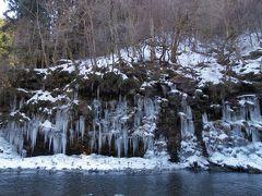 日帰りバスツアーで三十槌の氷柱と宝登山の蠟梅見学