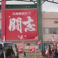 「広島カープ・九州日南」見に行きました。2016 2月14日