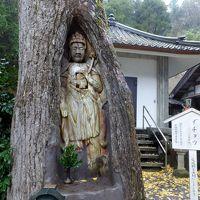 湖上館パムコ *諦応寺の銀杏観音*萬徳寺の大山モミジ書院庭園に行ってきました。