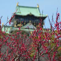 快晴の大阪城梅林で満開の梅を堪能し、西宮で戸田弥生の室内楽、大阪でウィーン放送響を聴く