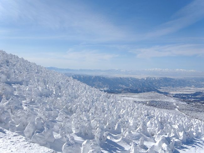 東北の雪まつりと温泉を楽しみに、山形→秋田→岩手とまわる10日間のひとり旅に出ました。<br /><br />山形駅近くに泊って、2日目はスノーモンスターと呼ばれる樹氷を見に蔵王へ。お天気がよくて素晴らしかったです!いやぁ、いいもの見ました!