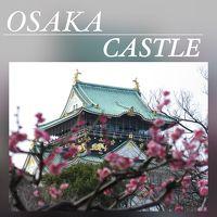 大阪城の櫓見学と梅林 2016年 2月
