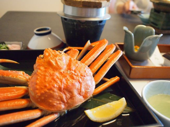 日帰りで石川県加賀温泉の片山津温泉,佳水郷へ行ってきました。<br />祖母,母,4歳の息子の3人旅です。<br />カニを食べた後,徒歩5分の中谷宇吉郎雪の科学館で色々な実験を見て遊んで帰りました。