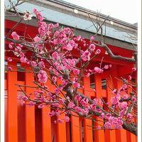 Solitary Journey [1713] 観望の美麗なるは、毛利氏広島に築城以来、第一のもの<御祭神は徳川家康公、廣島東照宮>広島県広島市