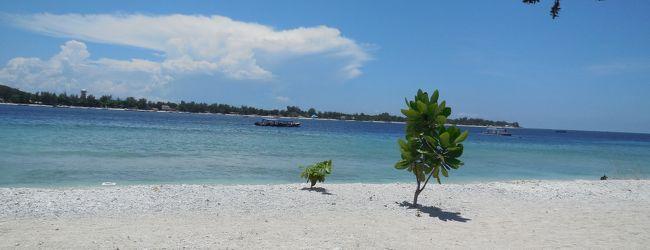 ロンボク島沖のギリ・メノに行き、なぜか...