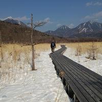 冬の奥日光をスノーシューで歩こうと思ったら・・・♪①
