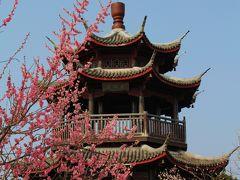 播磨のプチ中国~世界の梅公園を歩く~