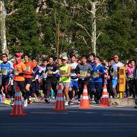 2016 東京マラソン 20K地点付近