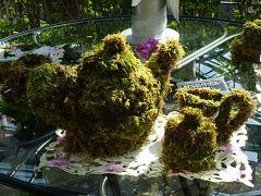 淡路島観光(04) 奇跡の星の植物園 ラン展その3 癒しの庭~バルコニーまで。