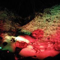 冬の芸術あしがくぼ氷柱ライトアップを見に行きました!