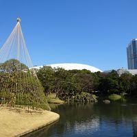 冬晴れの小石川後楽園 ◇ 水戸黄門ゆかりの庭で梅を見よう♪