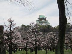 大坂城の梅と桃