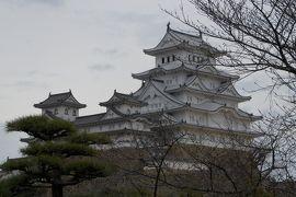 20160306-2 姫路 途中下車して、世界遺産姫路城、名物えきそば