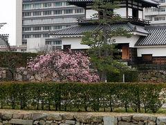 2016.2山口・広島出張旅行2-リーガロイヤルホテル広島,広島城を散歩