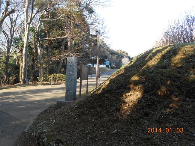 お城や史跡が大好きな私。<br />暇があれば、お城をめぐっています(*^v^*)<br />今回は千葉県流山市にある「新選組流山本陣・近藤勇陣屋跡」と<br />千葉県佐倉市にある「臼井城」を散策しました。