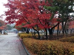 ソウル旅行2014年11月5泊6日 3日目